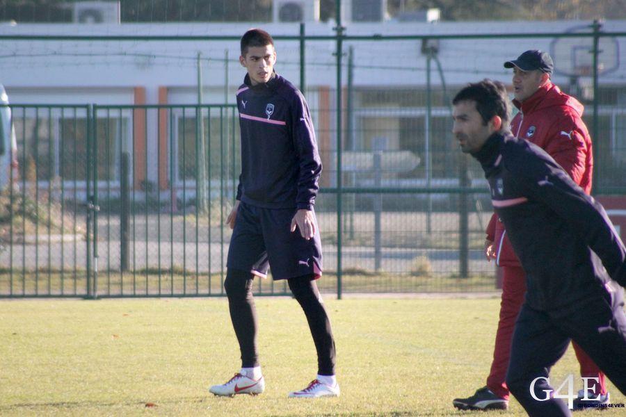 Savic Lobello