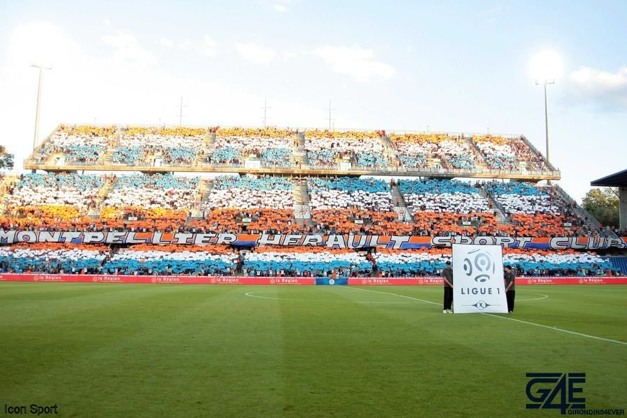 MHSC Montpellier Supporters Icon