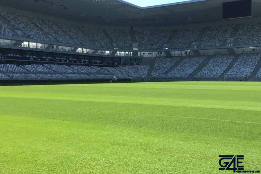 Pelouse Nouveau Stade