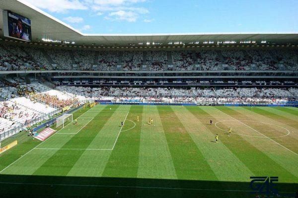 Stade, pelouse
