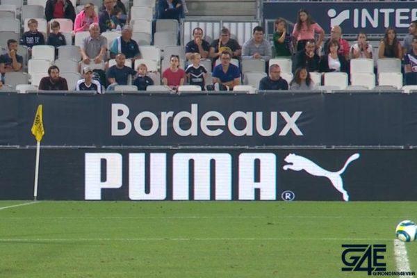 Bordeaux Puma